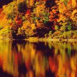 紅葉の名所!豊平峡ダムで錦秋の木々に包まれる一日♪