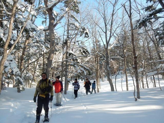 知床冬のアクティビティイメージ