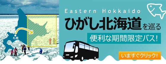 http://www.kosokubus.com/special/hokkaido/?ad=HKL