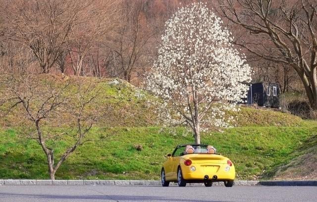 早春のドライブ