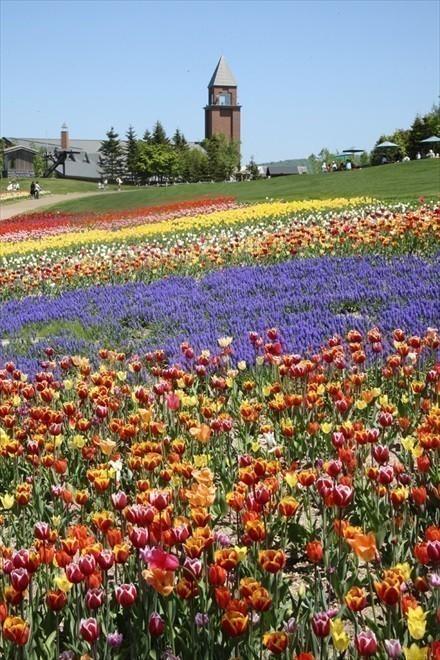 札幌 公園