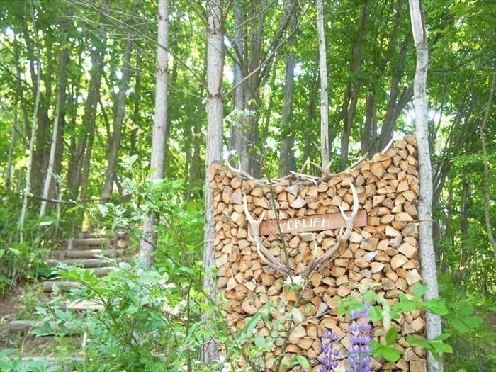 森のテントサウナ