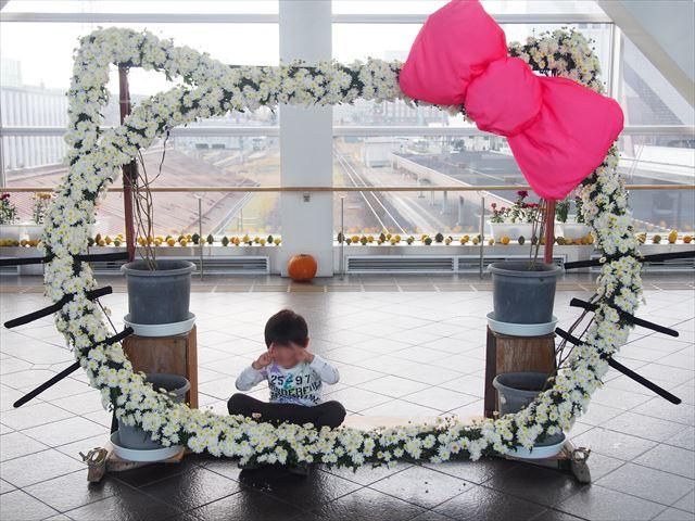 きたみ菊祭り キティちゃん 菊のオブジェ