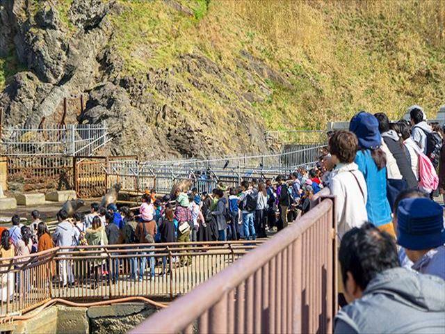 おたる水族館 海獣公園 海獣ショー