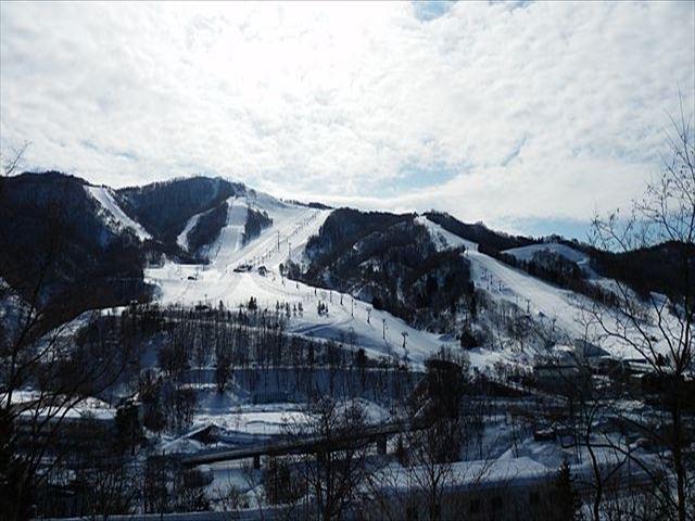 マウントレースイスキー場 スキーコース