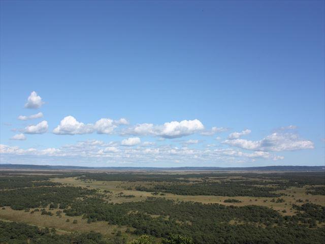 釧路湿原 展望台 緑の湿原を望む