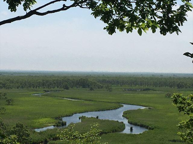 釧路湿原 展望台から望む沼地
