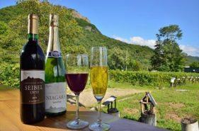 北海道産のワインならここ!八剣山ワイナリーへ