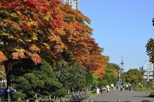 大通公園 秋の光景