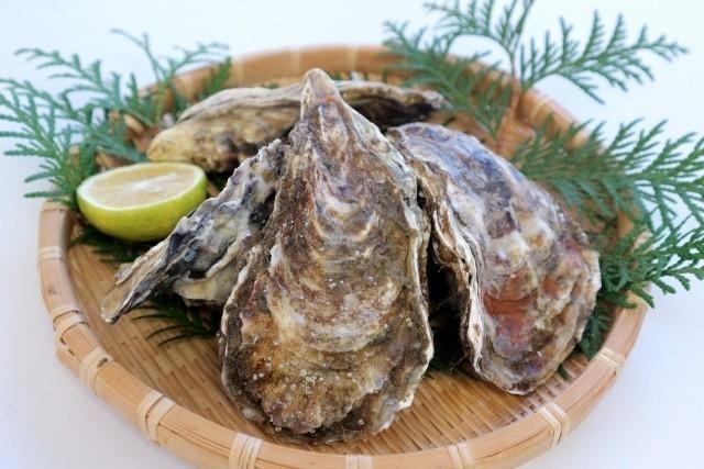 北海道 海鮮 牡蠣 かぼすを添えて
