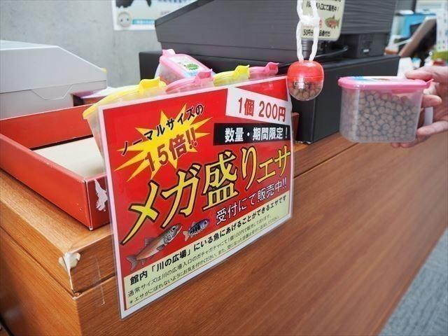 メガ盛り 標津サーモン科学館