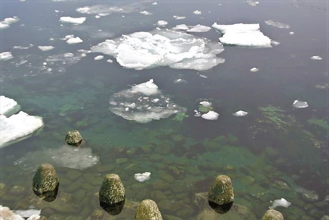 知床 冬 2泊3日 海が透き通っている