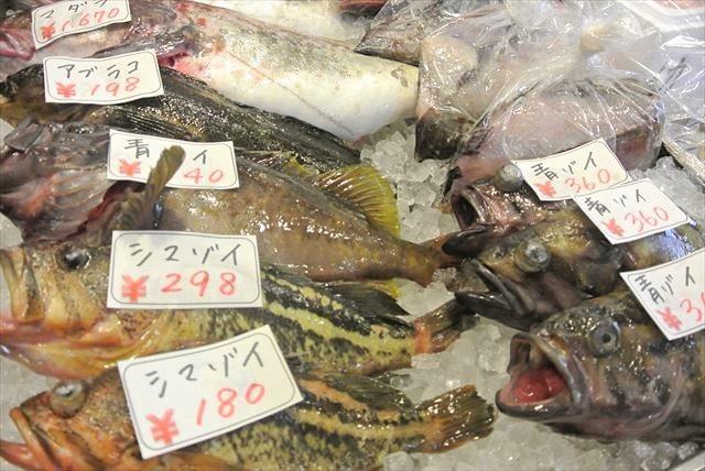知床 冬 2泊3日 道の駅らうす 魚