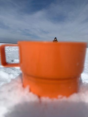 冬 2泊3日 氷平線