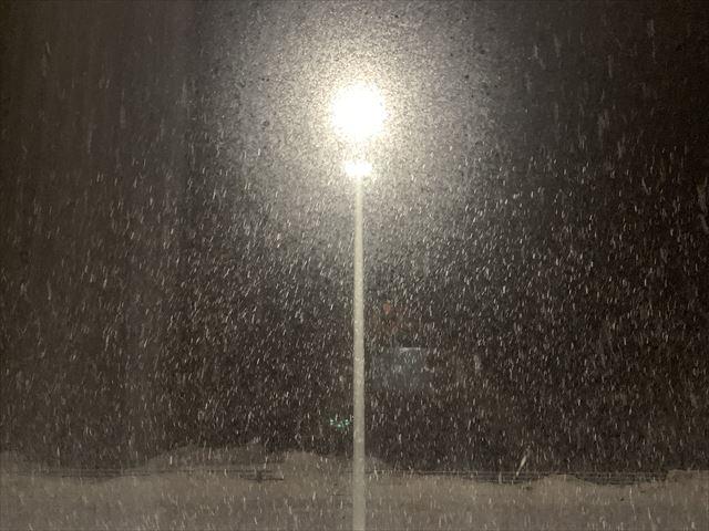 知床 冬 2泊3日 羅臼 雪