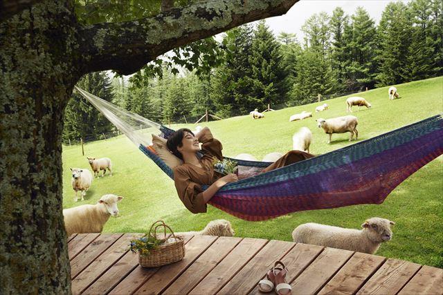 星野リゾート ファームエリア 羊とお昼寝ハンモック