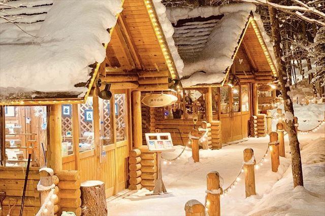 ニングルテラス ライトアップ 冬