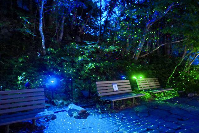 定山渓ネイチャールミナリエ FOREST ILLUMINATION