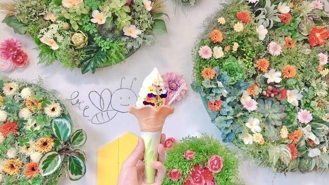 小樽観光 インスタ ナチュラルハニー 花蜜ソフトクリーム