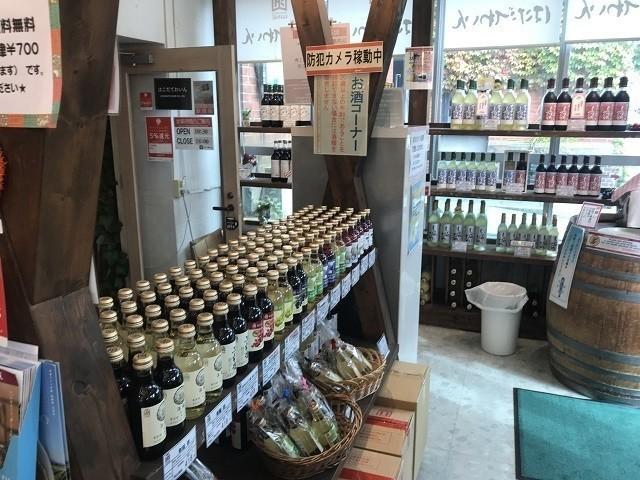 函館 明治館 はこだてワイン葡萄館 七飯町のワイナリー ワインの試飲