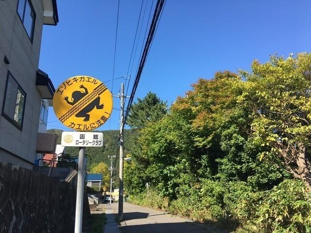 函館 看板 函館山 珍標識 エゾヒキガエルに注意
