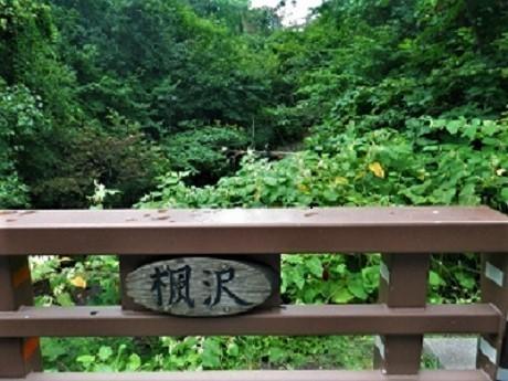 苔の回廊 紋別橋 目印