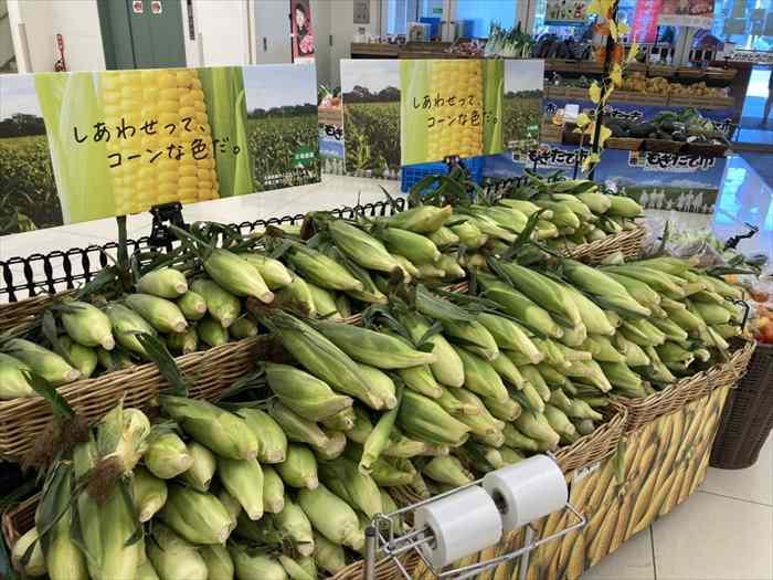 札幌 スーパーマーケット 春 おすすめ とうもろこし