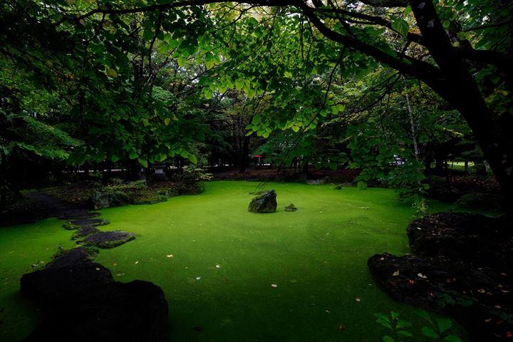 帯廣神社 神の池