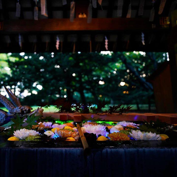 帯廣神社 花手水 夏