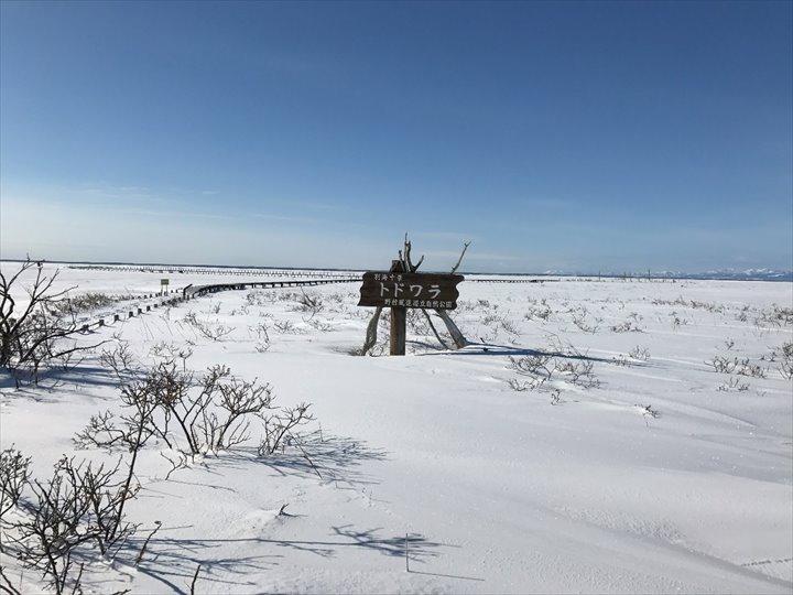 トドワラ 冬景色