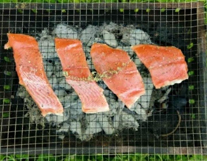 知床 海鮮 時知らず 鮭