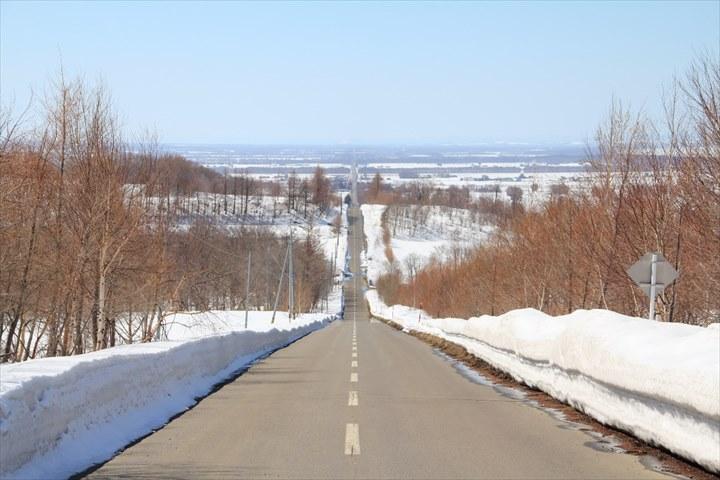 道東 観光 天に続く道