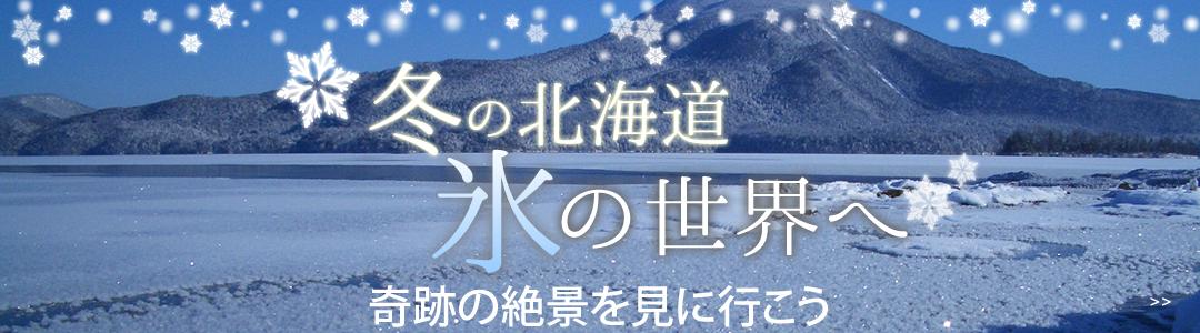 オンライン流氷ツアー