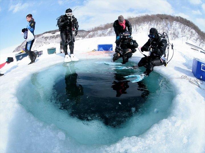 知床 流氷 ダイビング
