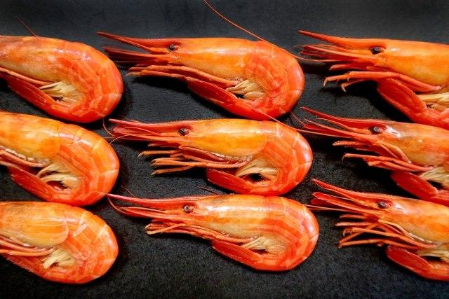 北海道 特産物 シマエビ