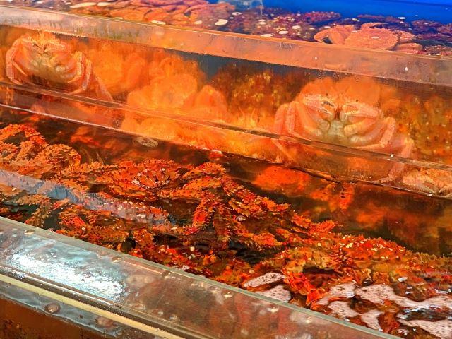 北海道 特産物 毛蟹