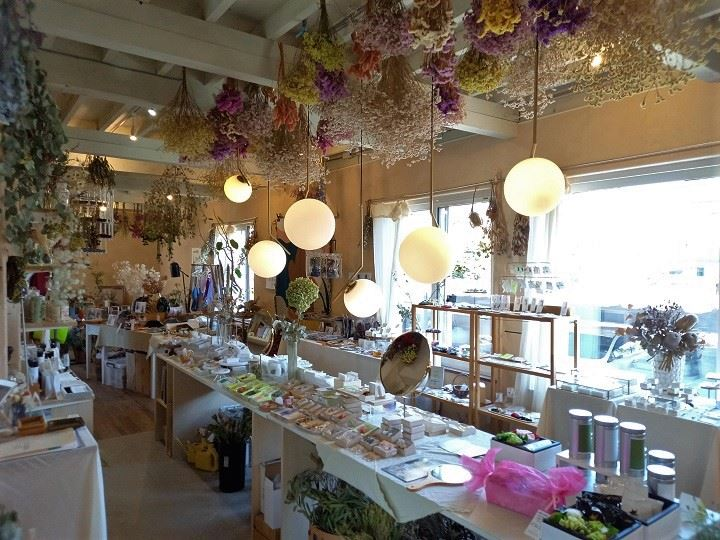 札幌 癒し カフェ ノーリーズボタニカルカフェ 店内