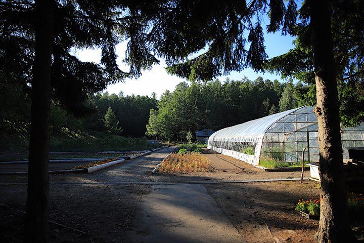 フラノ寶亭留 ガーデン 自家菜園